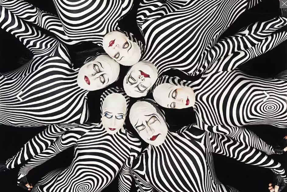 Cirque du soleil O Zebras